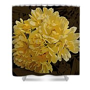 Lady Banks Rose Cluster Shower Curtain