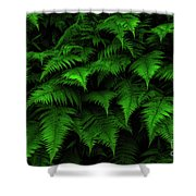 Lady Ferns Shower Curtain