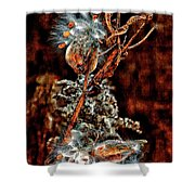 Lady Of The Dance II  Shower Curtain