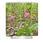 Lady Slipper 2046 Shower Curtain