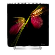 Lady Slippers As Running Shoes Shower Curtain