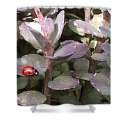 Ladybug Garden Shower Curtain