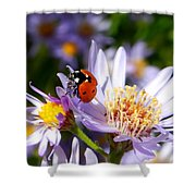 Ladybug Shows Her Heart Shower Curtain