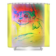 You Are So Ladylike That One Almost Forgets What You Really Are  Shower Curtain
