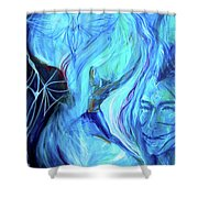 Laeyfe Becomes The Aurora Shower Curtain