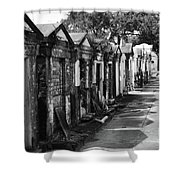 Lafayette Row Shower Curtain