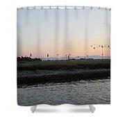 Lagoon Decoys Shower Curtain