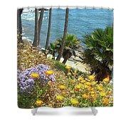 Laguna Beach, Southern California 12 Shower Curtain