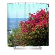 Laguna Beach, Southern California 3 Shower Curtain
