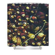 Laguna Beach Tide Pool Pattern 1 Shower Curtain