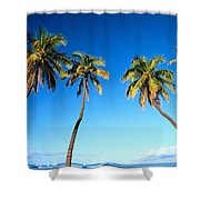 Lahaina Palms Shower Curtain