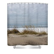 Lake Erie Sand Dunes Dry Grass And Ice Shower Curtain