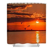 Lake Erie Sunset 7999 Shower Curtain