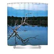 Lake Fryer Tree Shower Curtain
