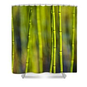 Lake Grass Shower Curtain