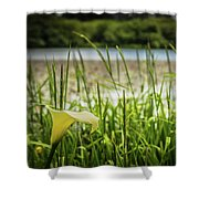 Lake Lily Shower Curtain