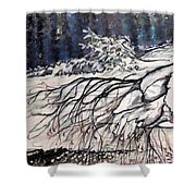 Lake Louise In Winter Shower Curtain