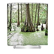 Lake Martin Swamp Shower Curtain