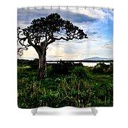 Lake Ndutu Shores Shower Curtain