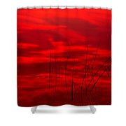 Lake Reeds And Red Sunset Shower Curtain