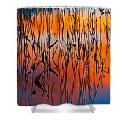 Lake Reeds And Sunset Colors Shower Curtain