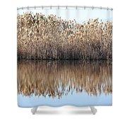 Lake Reflexion Shower Curtain