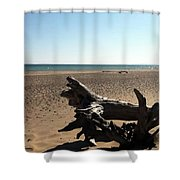 Lake Superior Driftwood Shower Curtain