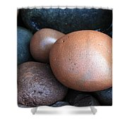 Lake Superior Rocks Shower Curtain