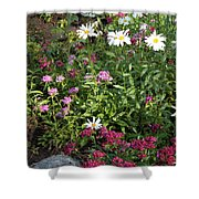 Lake Tahoe Beauties Shower Curtain