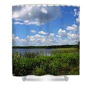 Lake Tarpon Shower Curtain