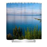 Lake Taupo Shower Curtain