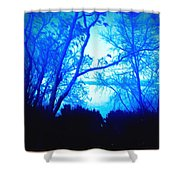 Lake View Cezanne Style Shower Curtain