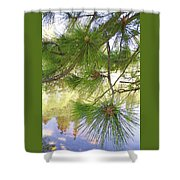 Lake View With Ponderosa Pine Shower Curtain