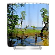 Lake Waccamaw Nc Shower Curtain