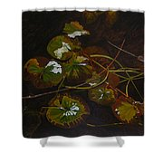 Lake Washington Lily Pad 16 Shower Curtain