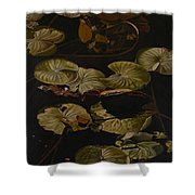 Lake Washington Lily Pad 9 Shower Curtain