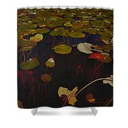 Lake Washington Lilypad 7 Shower Curtain