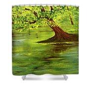 Lake Wilson Hawaii #35 Shower Curtain