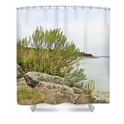 Lake033 Shower Curtain