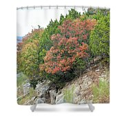 Lake034 Shower Curtain