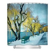 Lakeshore Walkway In Winter Shower Curtain