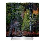 Lakeside In The Autumn Shower Curtain