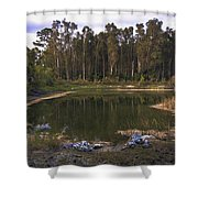 Lakeside Reflections Shower Curtain