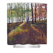 Lakeside Shadows Shower Curtain