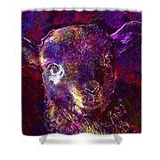 Lamb Spring Cute Animal  Shower Curtain