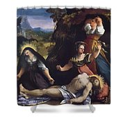 Lamentation Over The Body Of Christ 1517 Shower Curtain