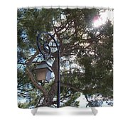 Lamp And Tree Shower Curtain
