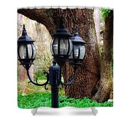 Lamppost And Oak Shower Curtain