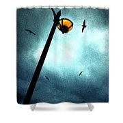 Lamps With Birds Shower Curtain