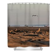 Land, Air, Sea Shower Curtain